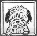 20080416012204s.jpg空犬