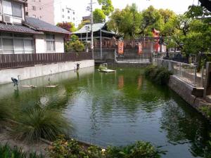 星合の池2ds