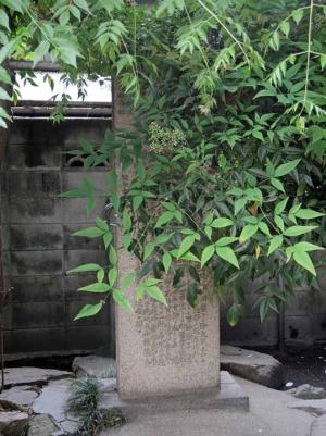 八阪神社5(記念碑)ds