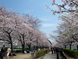 桜之宮公園2ds