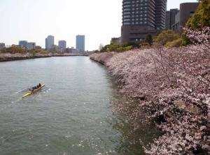桜之宮公園4ds