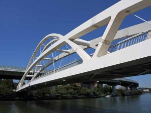 飛翔橋1ds